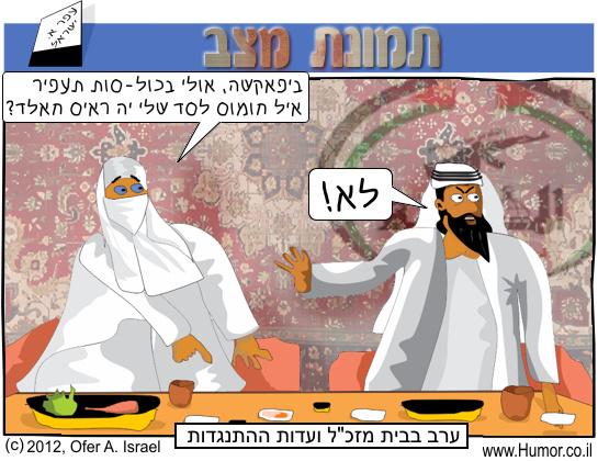 קומיקס : ועדות ההתנגדות